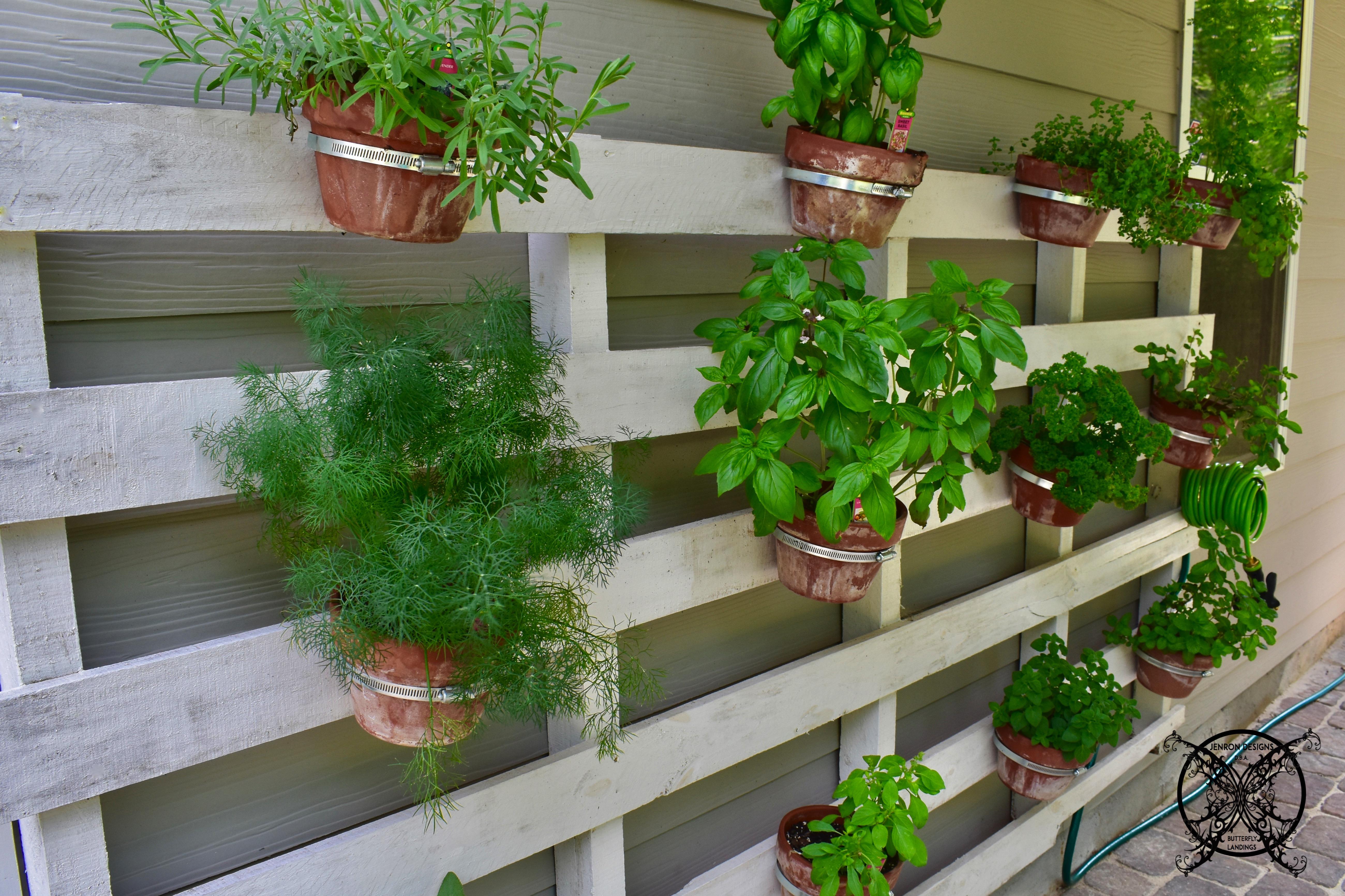 vertical pallet herb garden jenron designs. Black Bedroom Furniture Sets. Home Design Ideas