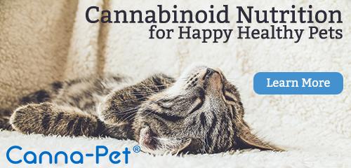 Cannabinoid nutrition for Happy Healthy Pets