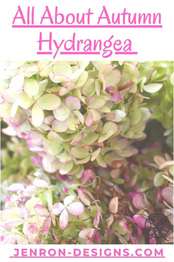 Autumn Hydrangea JENRON DESIGNS