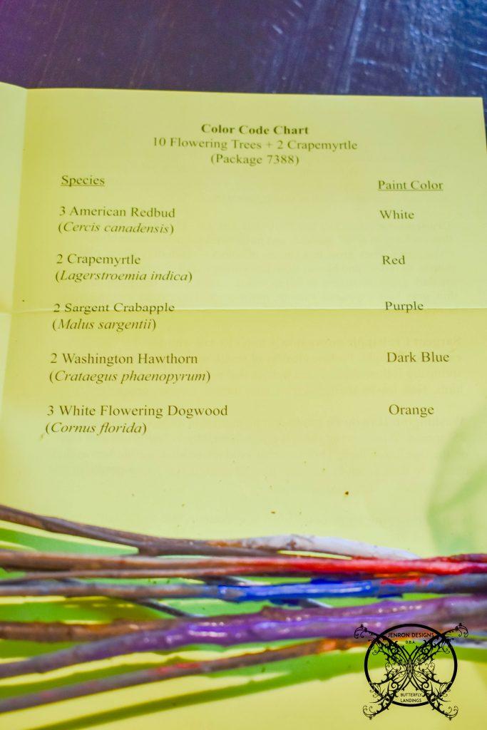 Colored Codes Baby Tree Arbor Foundation JENRON DESIGNS