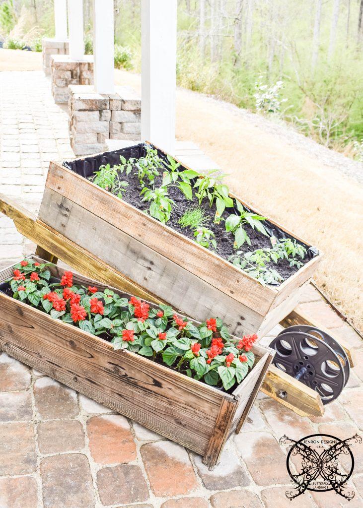 Wheelbarrow Garden JENRON DESIGNS