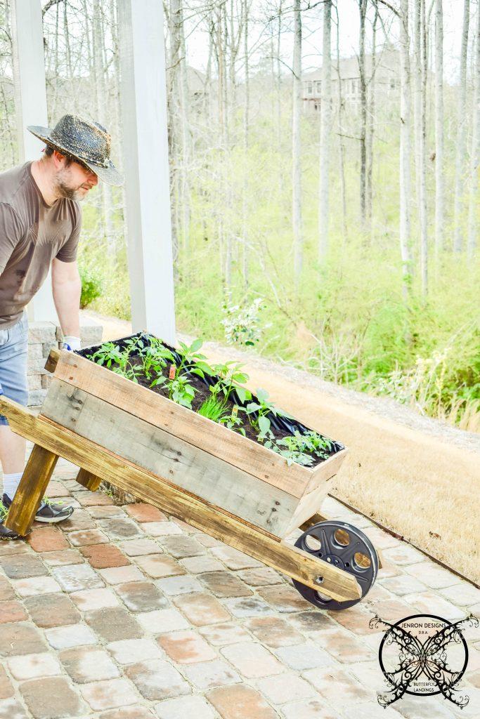 Wheelbarrow Garden salsa cart JENRON DESIGNS
