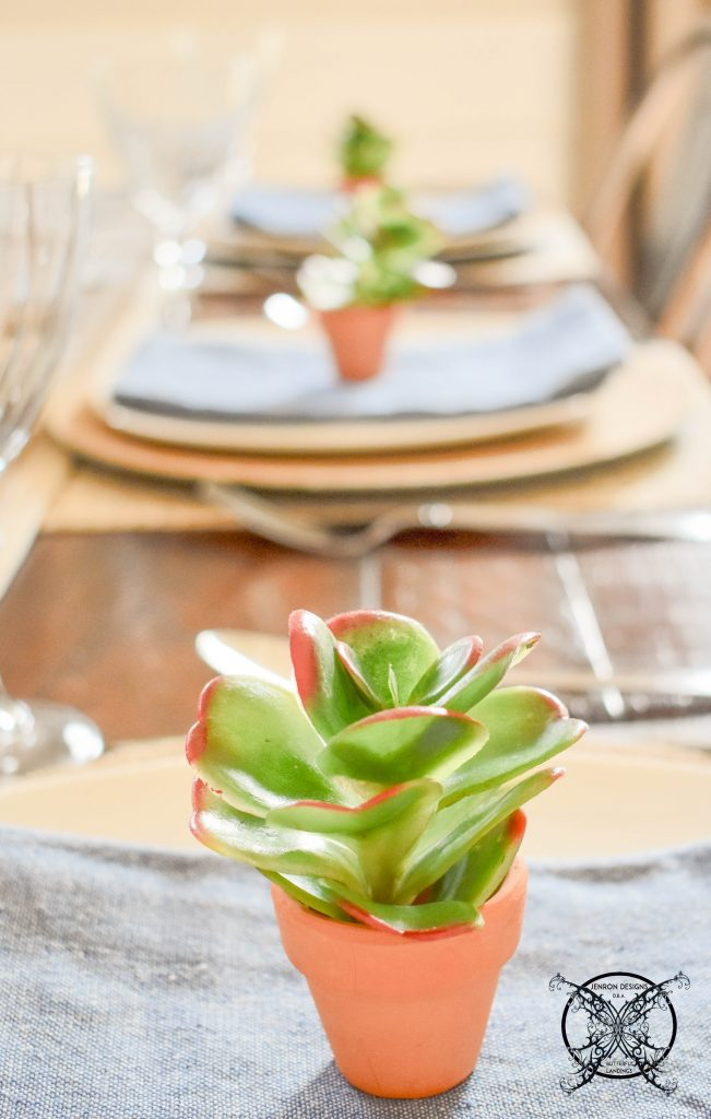Succulents & Decor JENRON DESIGNS.