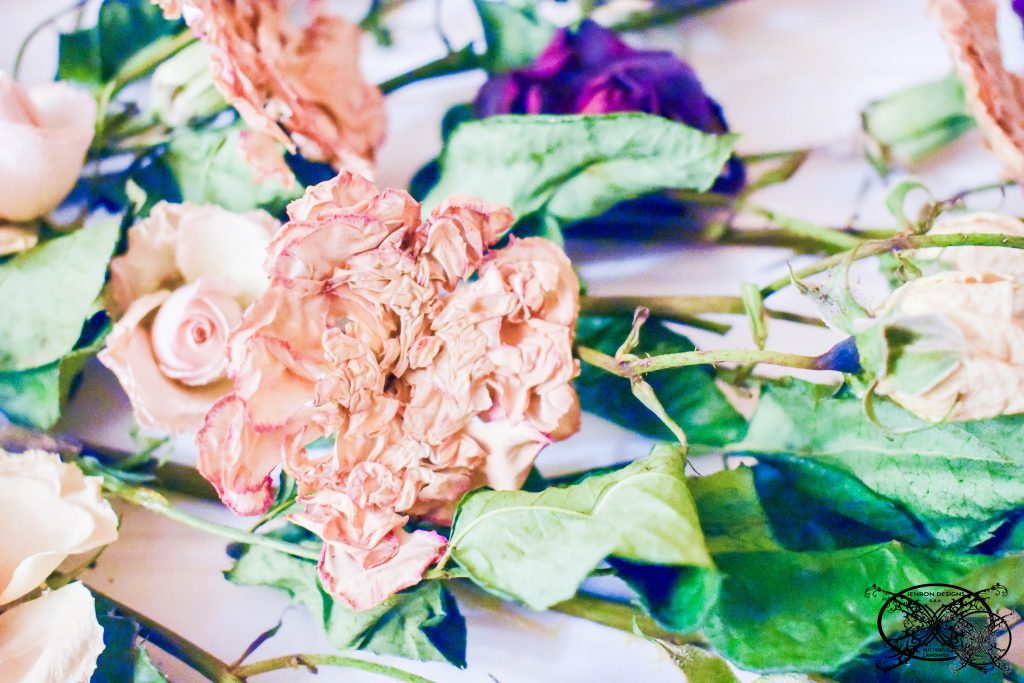 DIY Dried Flowers Jenron Designs