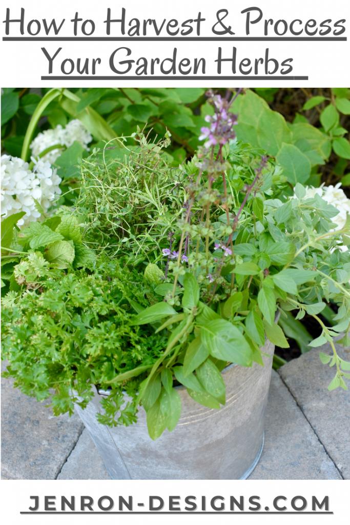 Harvesting Your Garden Herbs JENRON DESIGNS