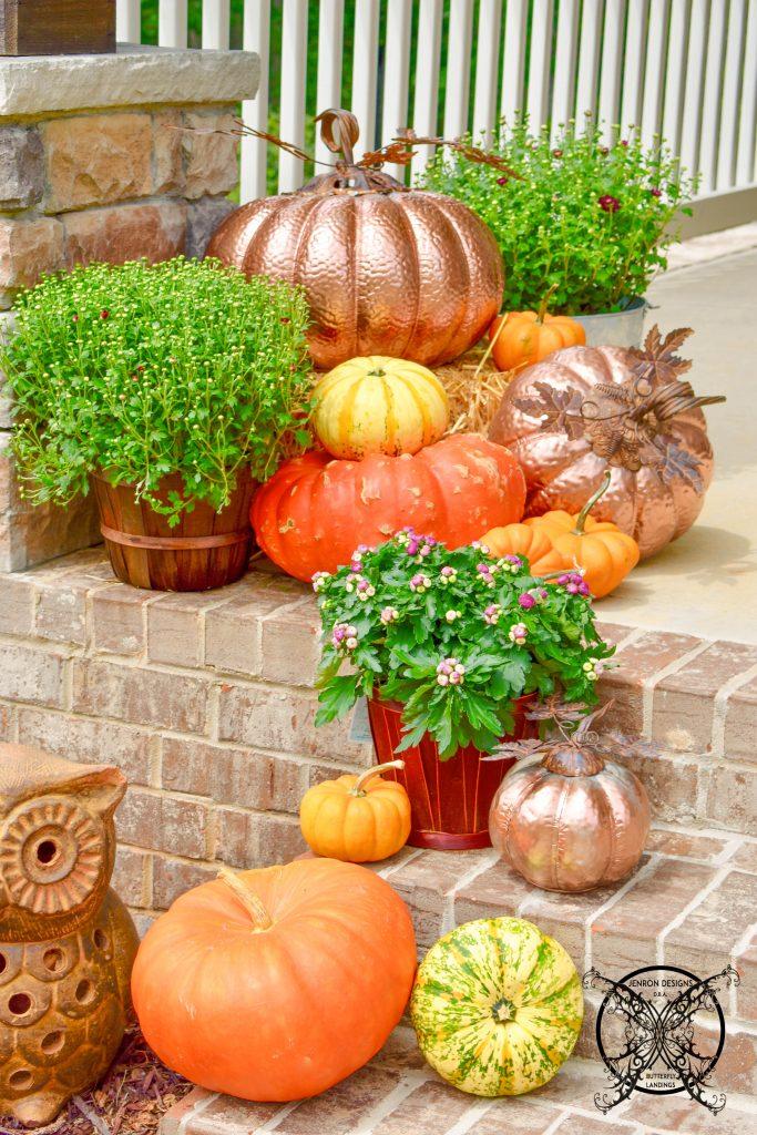 Pumpkin & Mum FALL JENRON DESIGNS