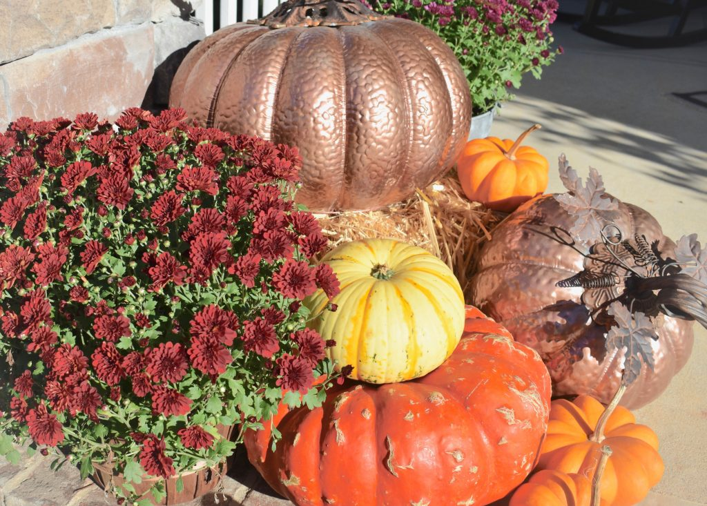 Pumpkins Painted Rose Gold JENRON DESIGNS