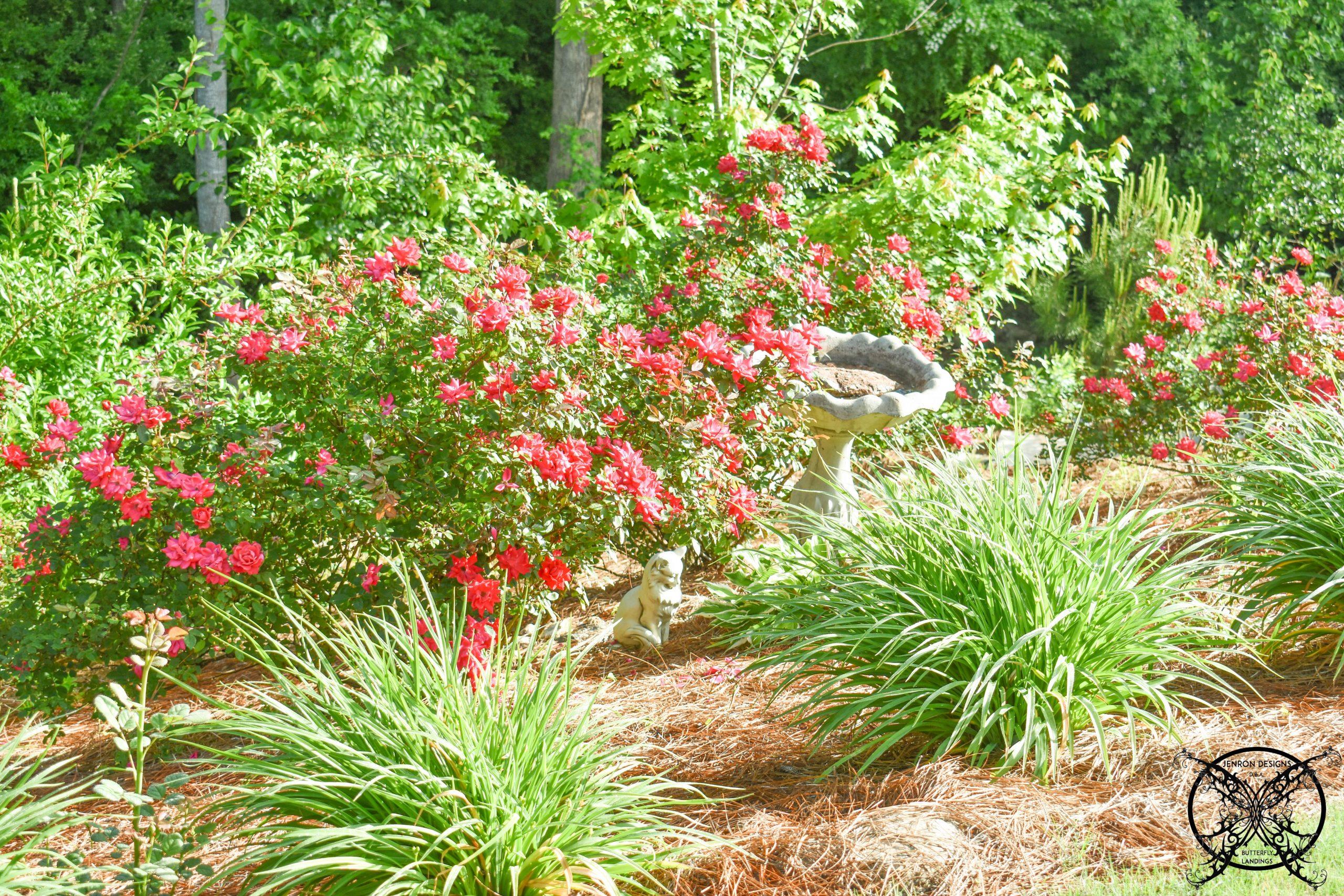 Creating a Four Seasons Garden JENRON DESIGNS
