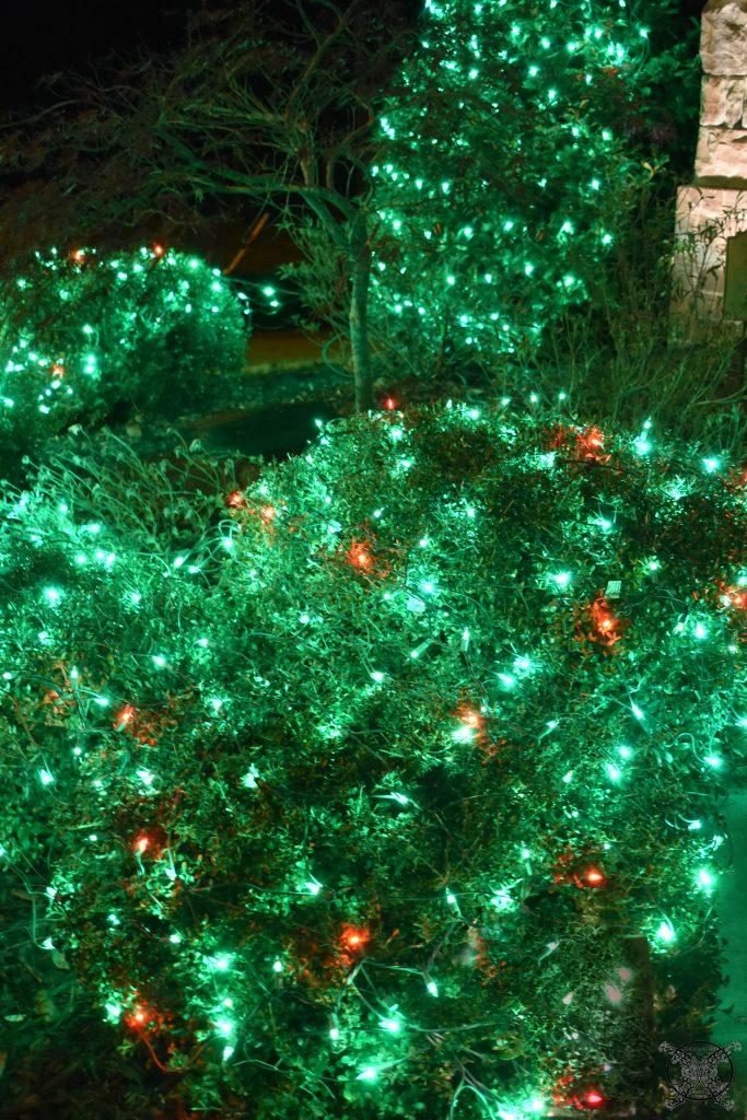 Holly Berry Christmas lights JENRON DESIGNS