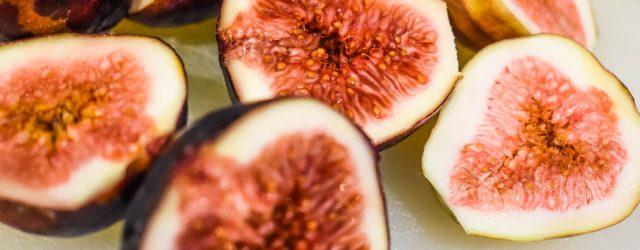 Figs JENRON DESIGNS