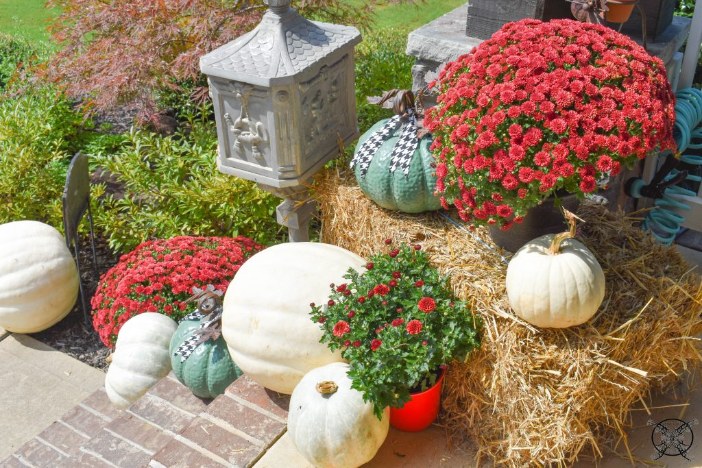 White Red & Green FALL Pumpkins JENRON DESIGNS