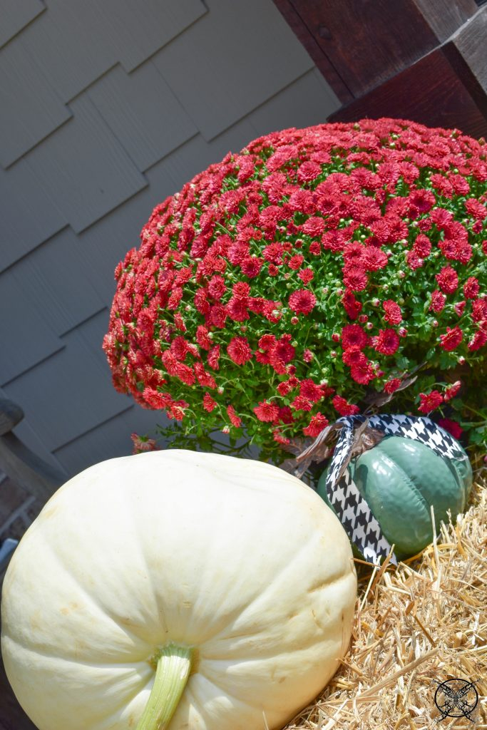 White Red & Green FARMHOUSE JENRON DESIGNS