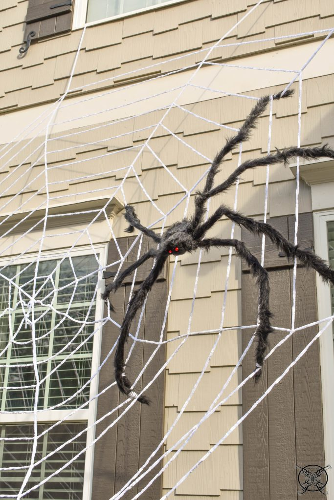 Spiderweb JENRON DESIGNS